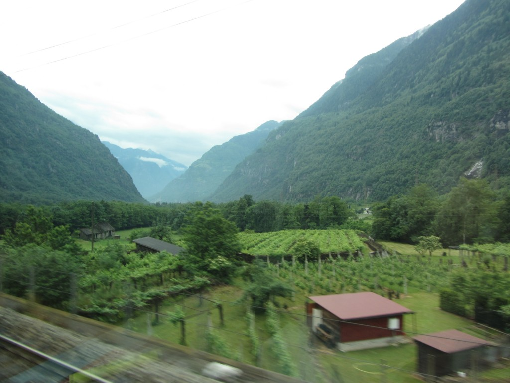 Zurich to Milano Train June 2013 (23)